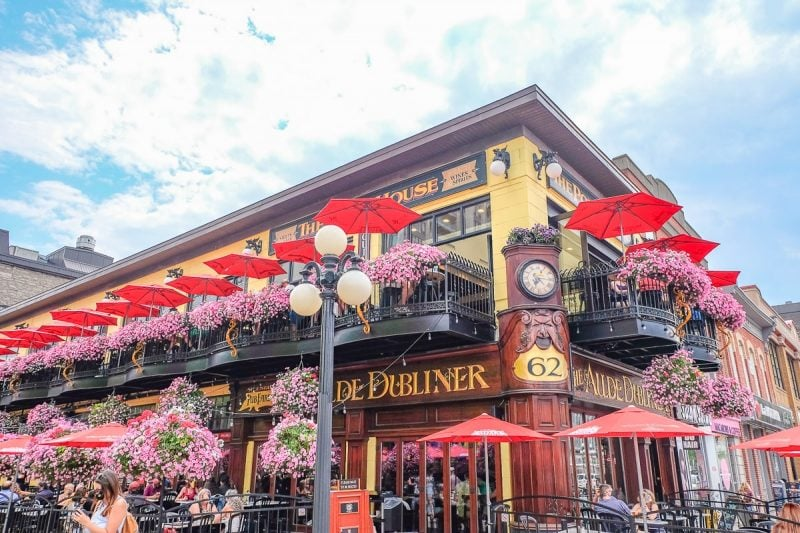 red umbrellas and flowers outside the aulde dubliner ottawa pubs and bars