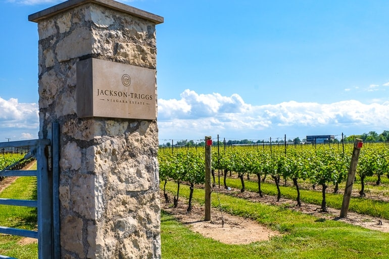 stone pillar with green vineyard in behind niagara on the lake wineries