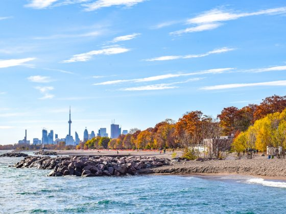 autumn leaves and rocky shoreline with buildings in background toronto tourist attractions the beaches