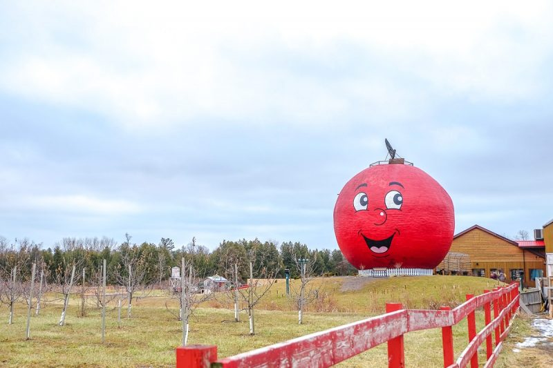 large red apple statue outside the big apple colborne ontario
