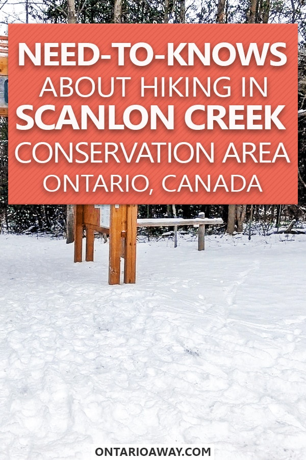 Hiking in Scanlon Creek Conservation Area Ontario Canada