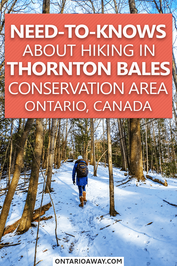Hiking In Thornton Bales Conservation Area Ontario Canada