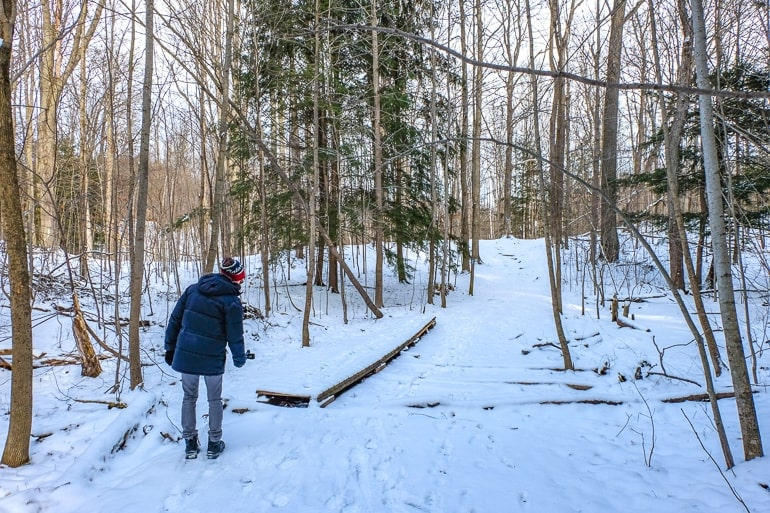man in coat walking snowy forest trail thornton bales conservation area