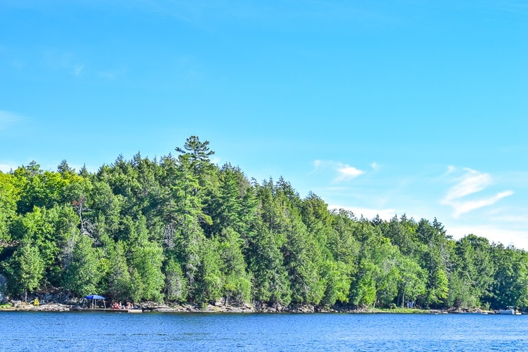 green trees and blue lake with dock cottage rental