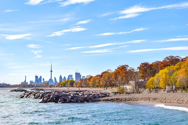 view of skyscrapers from beach with autumn leaves visiting toronto