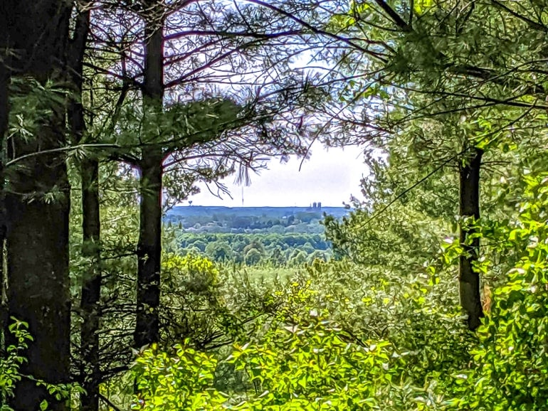 church tower through green forest in distance of starkey hill conservation guelph