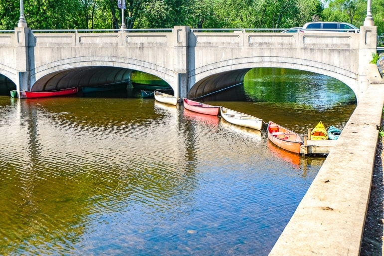 canoes tied in a line in river with bridge behind guelph ontario