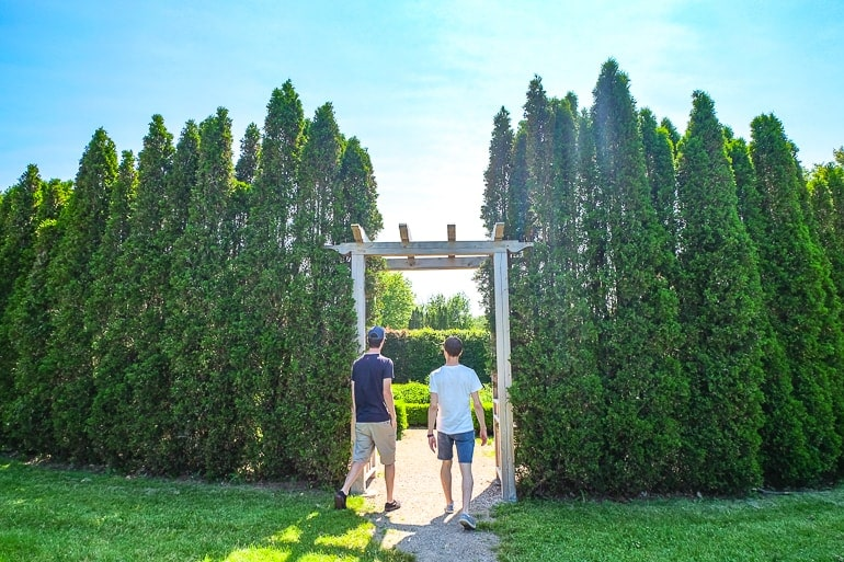 two guys walking through gate in tall hedges guelph ontario things to do
