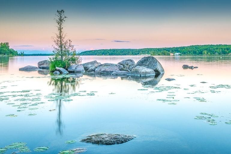 sunrise on blue lake with tree and rocks kawartha lakes day trip toronto