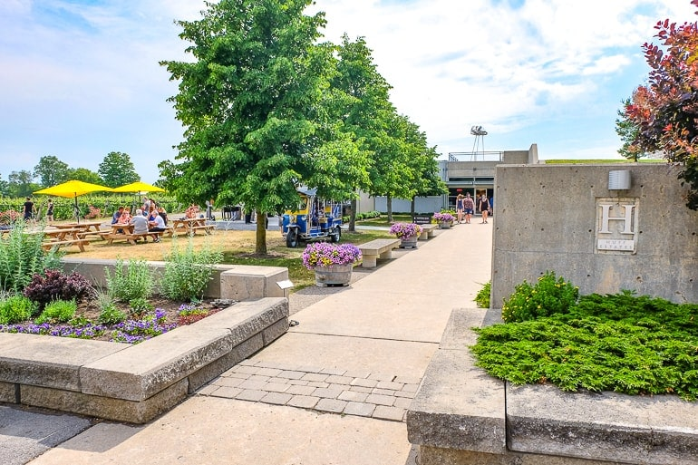 concrete sidewalk entrance to winery with trees prince edward county