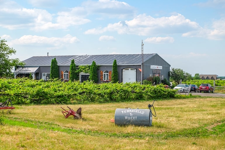 grey barn with green vineyard and barrel in front prince edward county winery