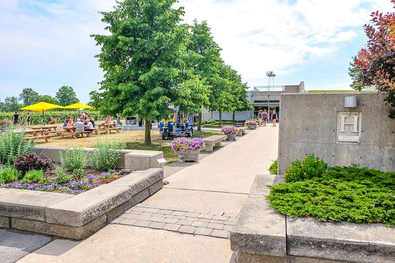 concrete sidewalk and entrance to huff estates winery with trees beside in prince edward county