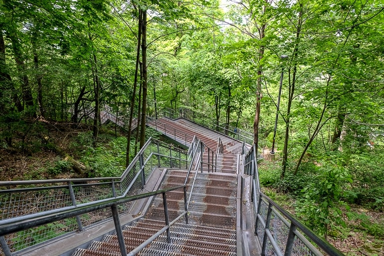 metallic stairs through green forest area in hamilton