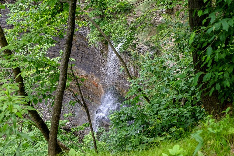 small waterfall against rock cliff with green trees around hamilton waterfalls
