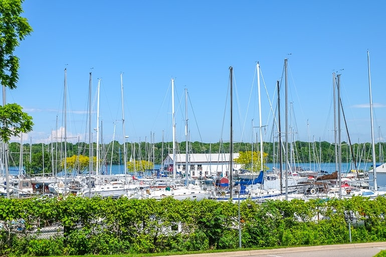 sailboats in harbour niagara on the lake ontario
