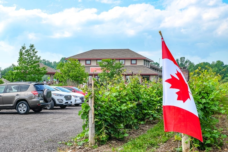 winery building with cars parked in front and mini canadian flag flying at sandbanks winery