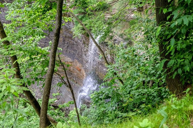 small waterfall tricking down rocks through green trees in hamilton