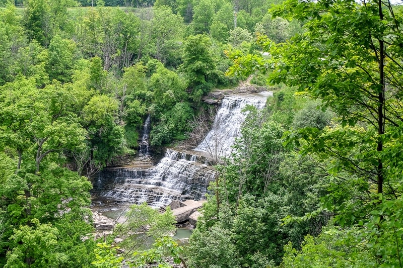 large waterfall seen through green trees in hamilton ontario