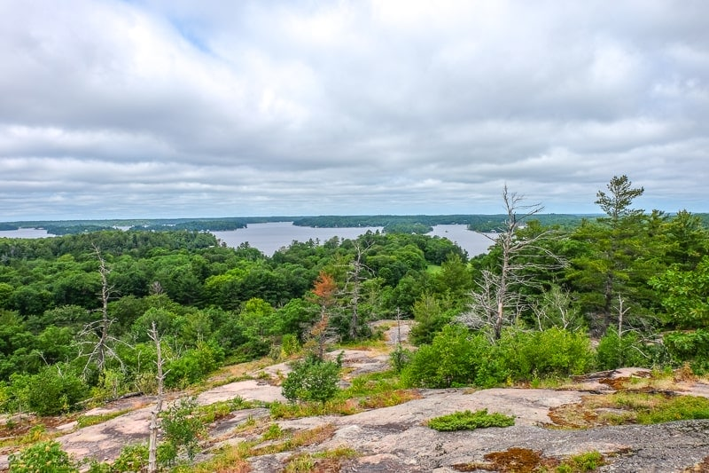 blue lake with green trees in distance on muskoka lookout trail