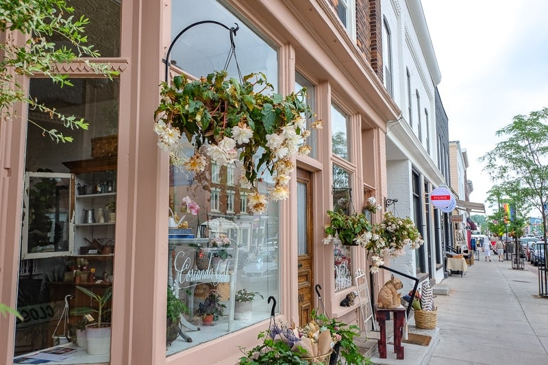 pretty shop fronts with sidewalk and shoppers in picton ontario