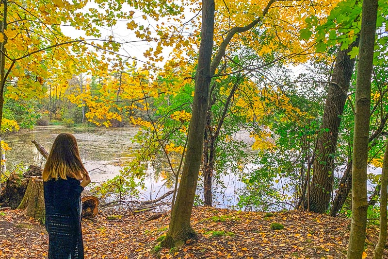 woman standing under trees beside lake with fallen leaves