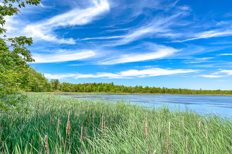 blue lake with green grass in front and blue sky above